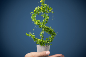 a hand holding a plant in a pot that looks like a dollar sign symbolizing higher interest rate of a personal money market account